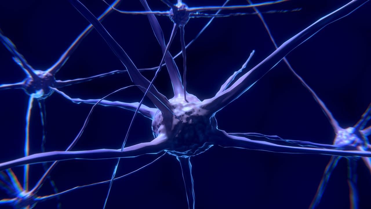 neurone-bien-utiliser-son-cerveau